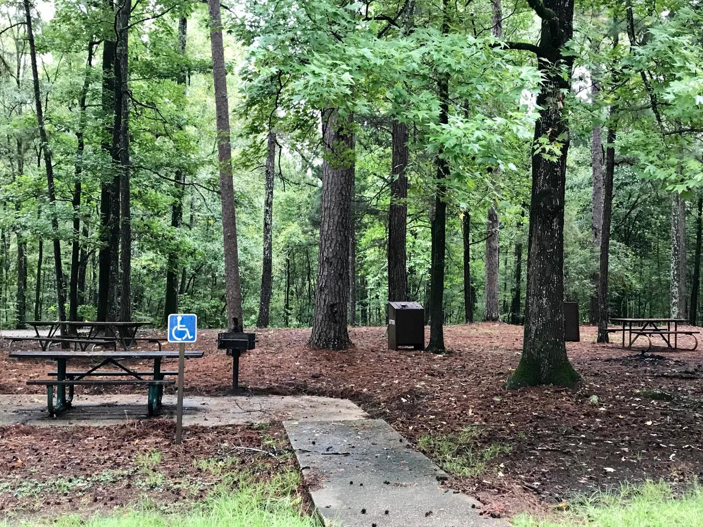 Accessible CampsiteADA Campsite