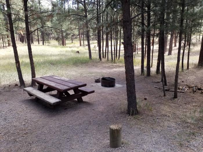 Site two has a metal fire ring and picnic table for visitors to enjoy in the shade.Site 2