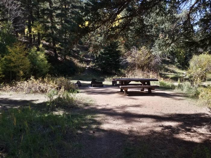 A campground with picnic table, fire ring grill combo, tent pad and shade.Site 3