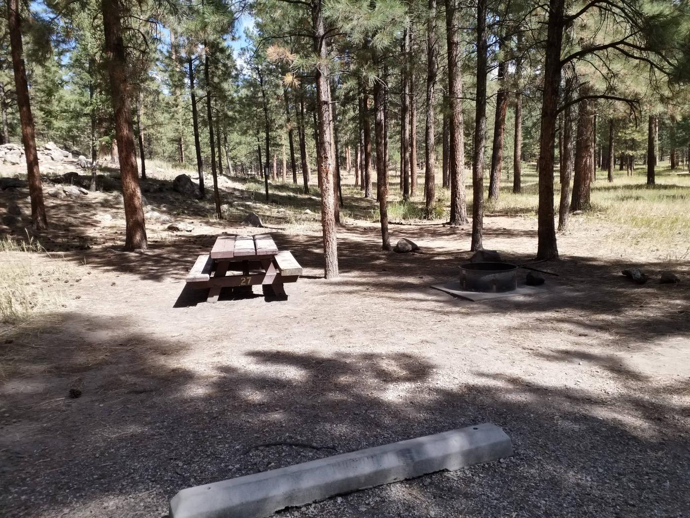 Site 27 provides a picnic table, metal fire ring, and back in parking.Site 27