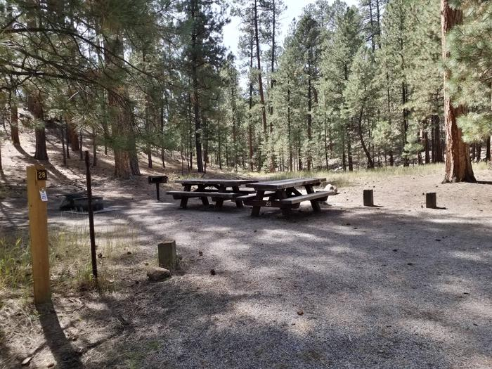 Pines surround and shade the two picnic tables, grill and fire ring at a campsite.Site 28
