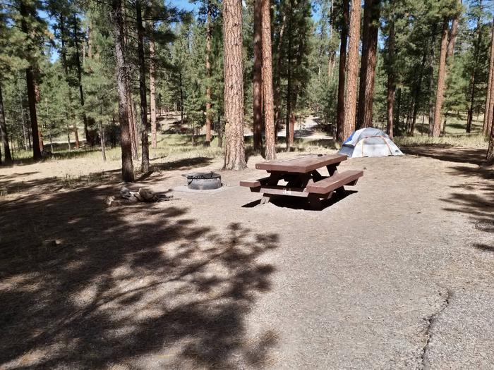 A picnic table with a metal fire ring, pines and a tent in the background.Site 34