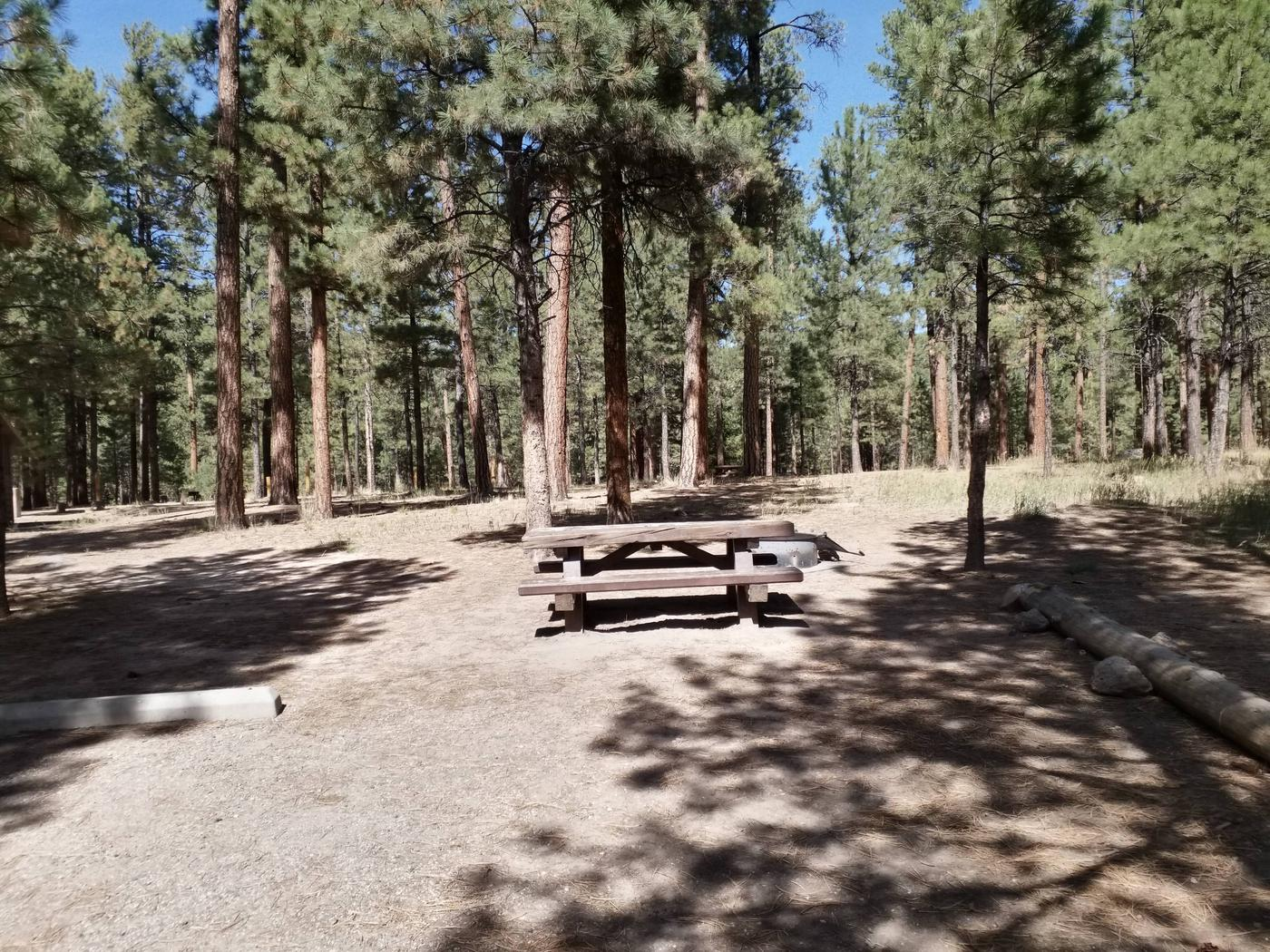 Blue skies and green pines take a backdrop to the picnic table and fire ring at site 39Site 39