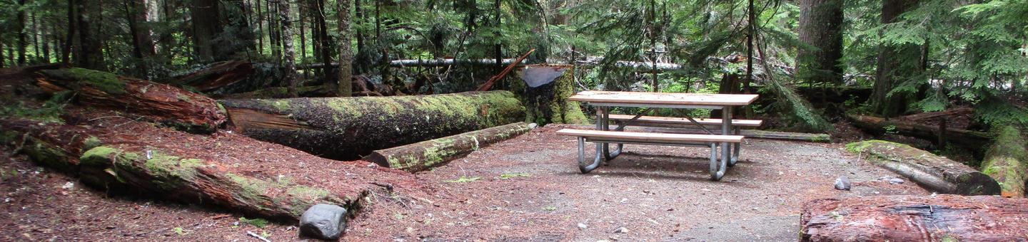 Picnic TablePicnic Table and Fire Ring
