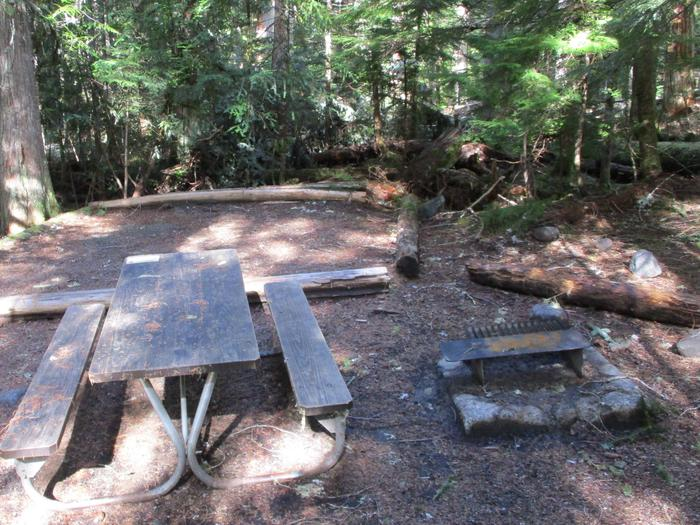 Picnic Table, fire ring, and Tent Pad