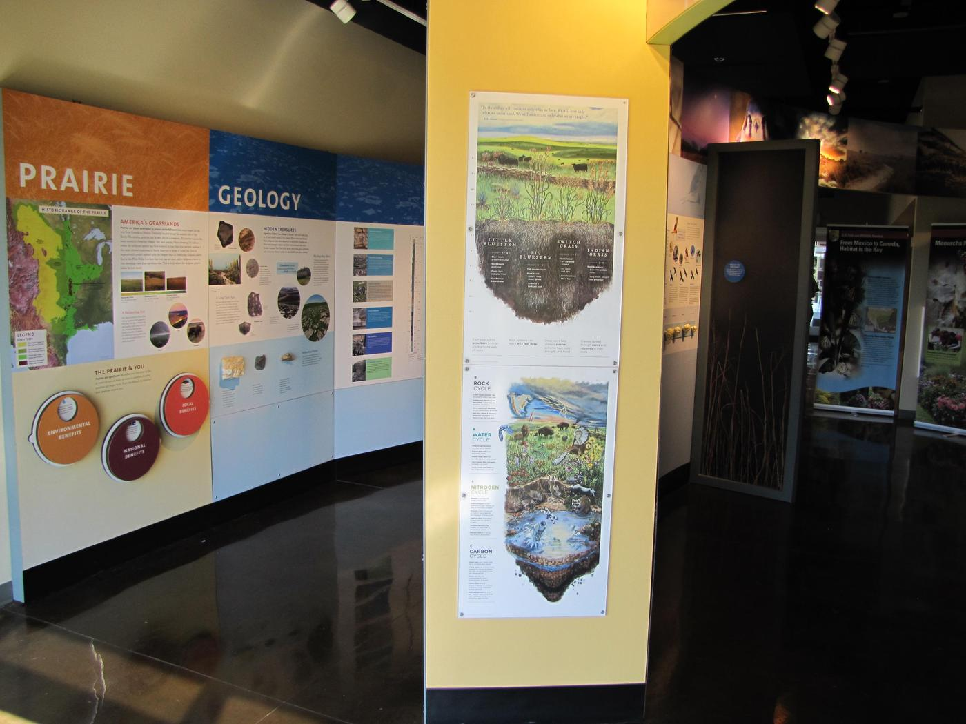 VC Interior 1Exhibits delve into the many factors shaping prairie ecology.