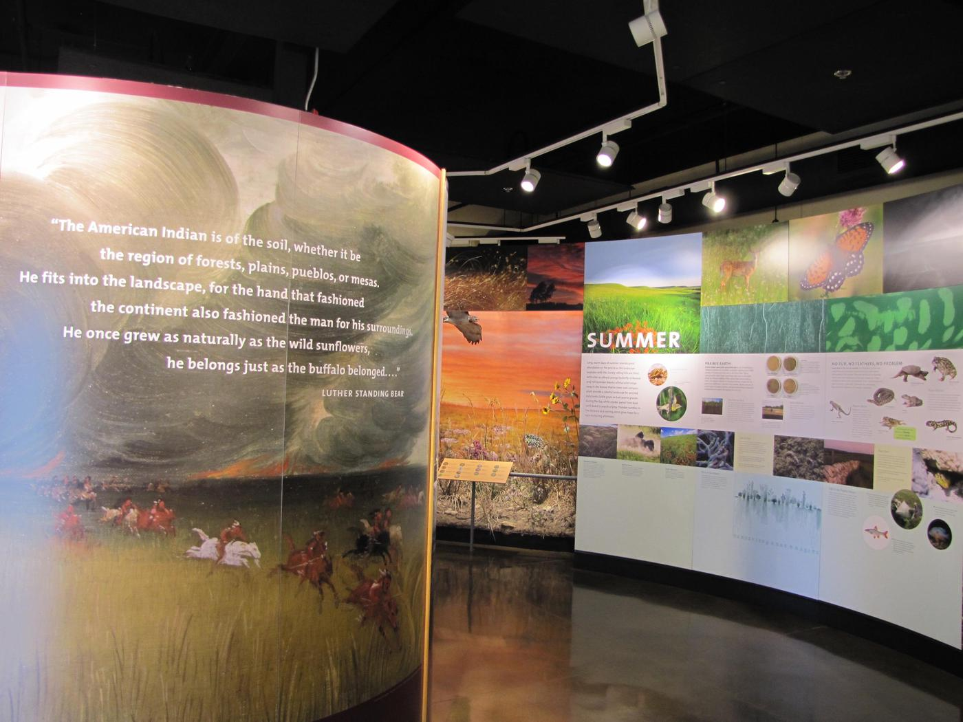 VC Interior 2Exhibits explore the history of conservation and animal diversity.