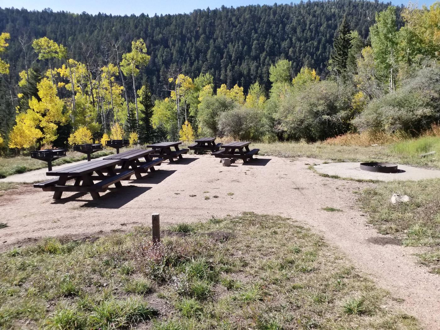 A campground with picnic tables, fire ring and golden aspen in the background.Jack's Creek Group Area Site A