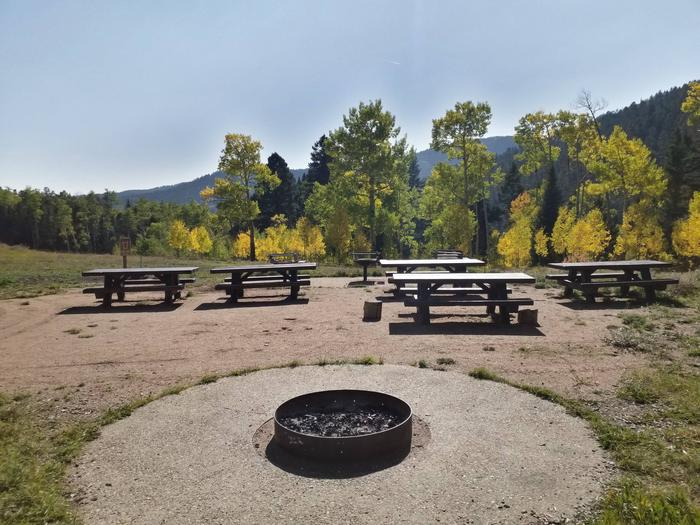 A metal fire with picnic tables, aspen and pine in the background.Site A sideview at Jack's Creek GA A.