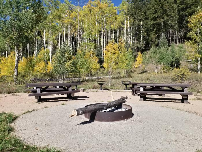 A metal fire ring with picnic tables and aspen underneath a clear, blue sky.Jack's Creek GA Site B.