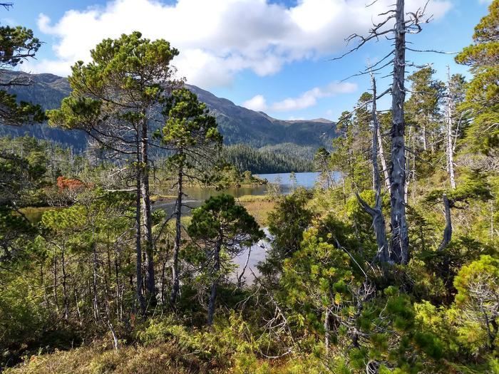 Suloia Lake trailNear lake outlet