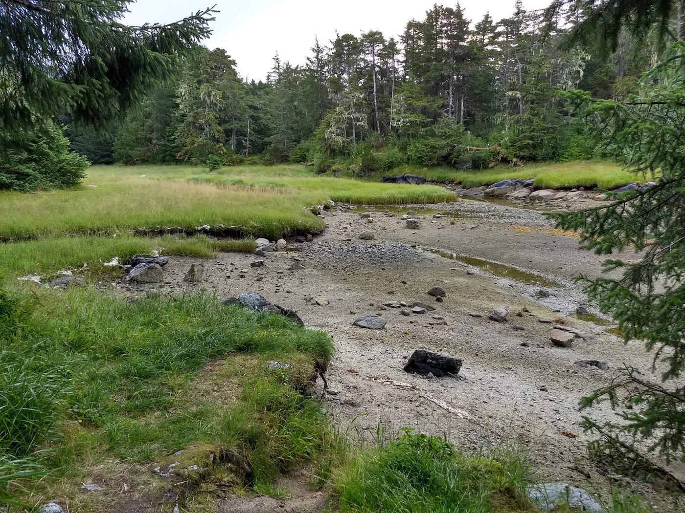 Creek near cabinAt low tide