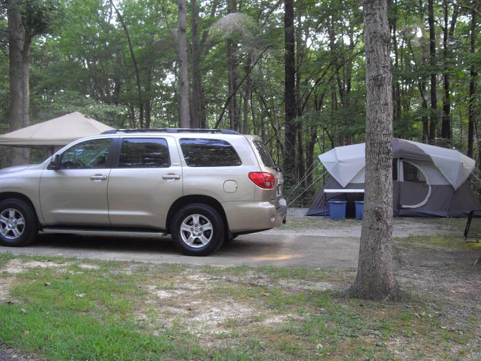 Site A7Site A7 is on a cul-de-sac with 3 other campsites.  Close to pool.  Low traffic area.