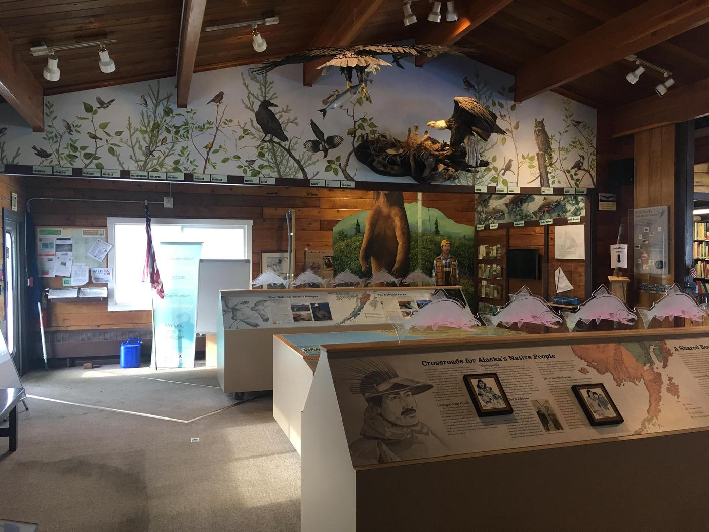 Interior of KSVC #1The exhibits in the King Salmon Visitor Center offer a sampling of what the area's public lands has to offer.