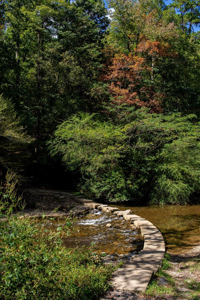 Creek CrossingStones built to bridge the gab across the creek