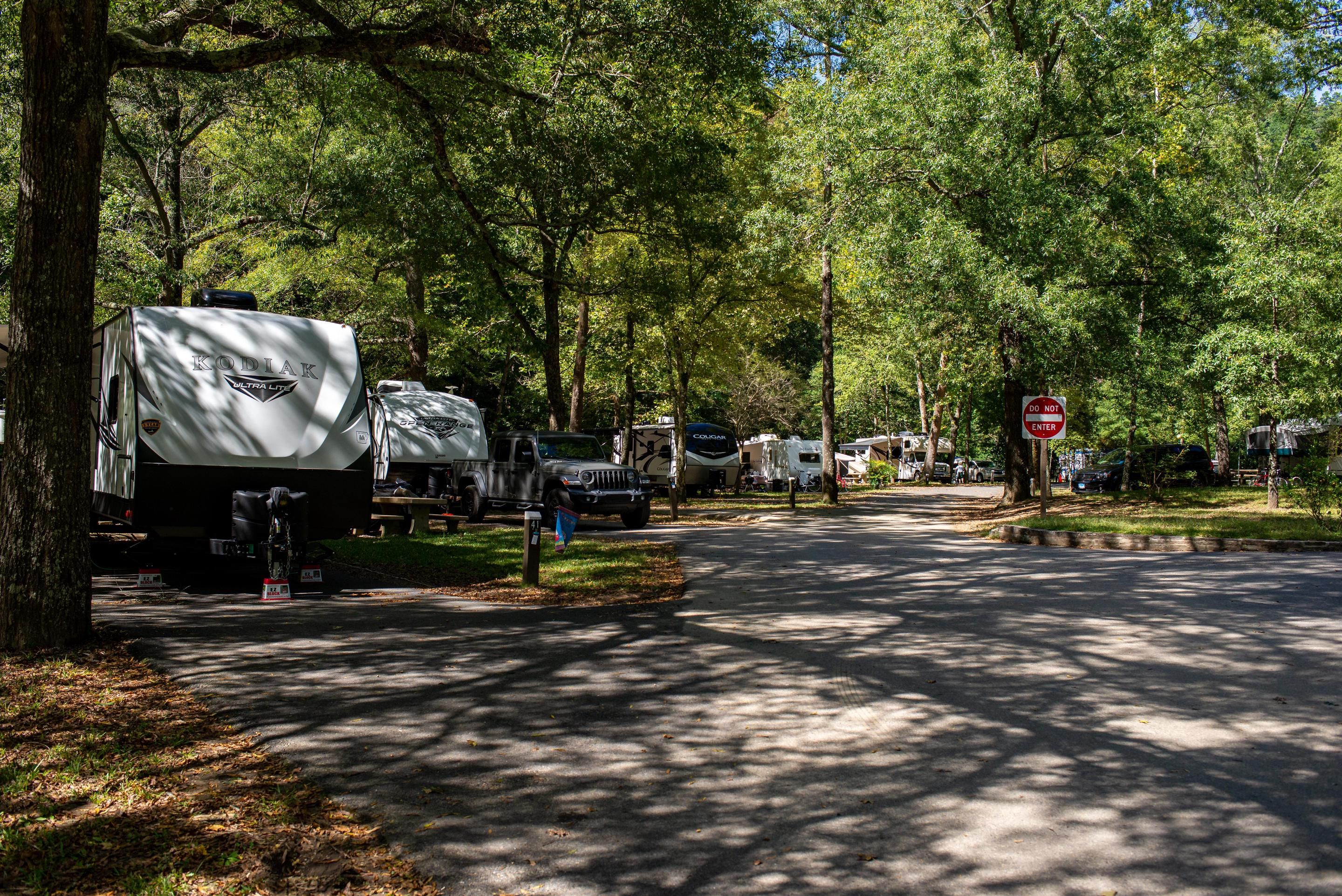 CampersPark your RV next to the river