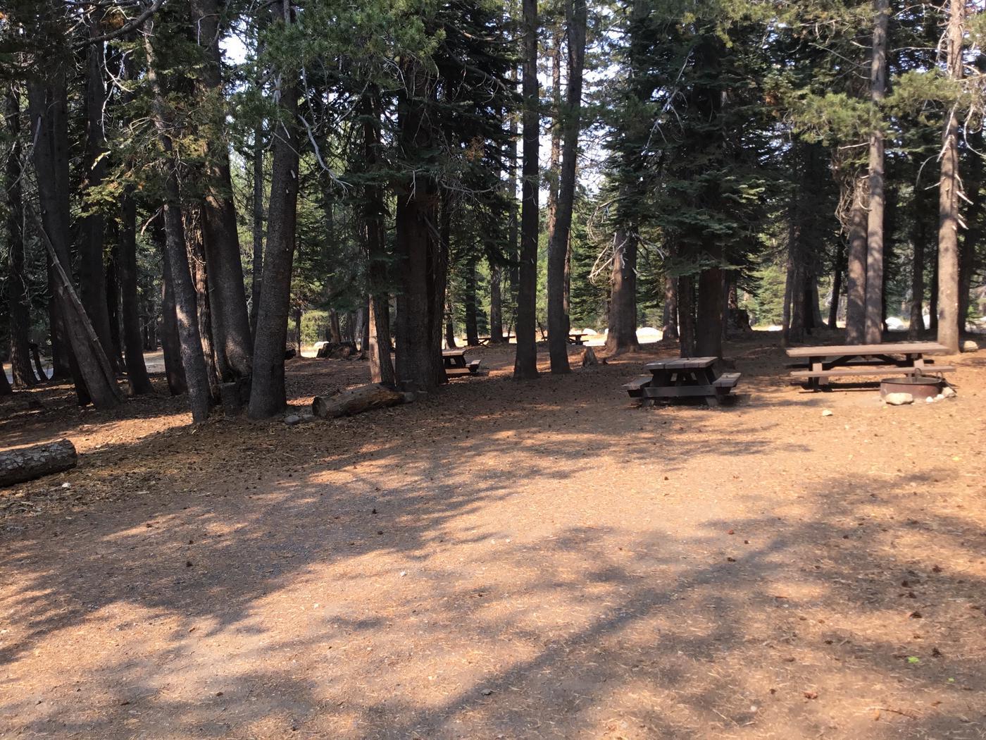 Campsite view #5
