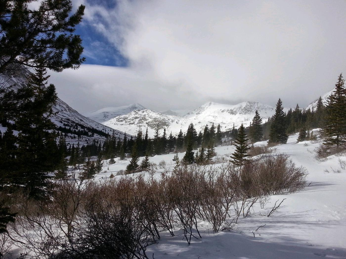 Pike National Forest Christmas Tree Cutting 2020 Permit   Pike And San Isabel National Forest Christmas Tree Permit