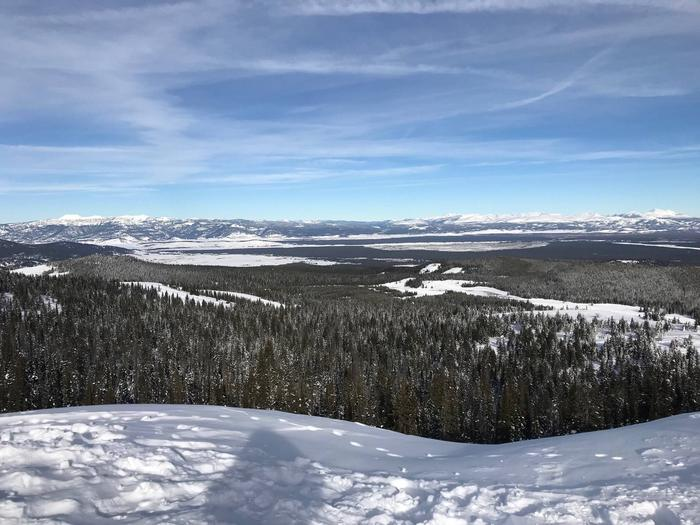Preview photo of Caribou-Targhee National Forest Christmas Tree Permit