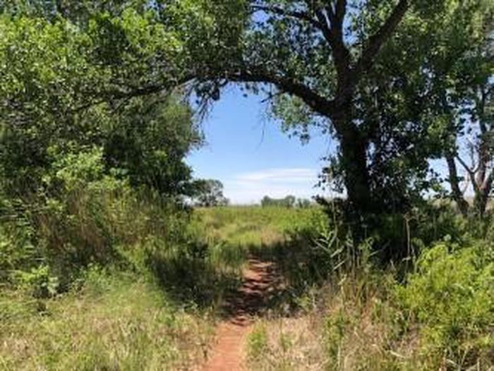 Mullinaw Trail