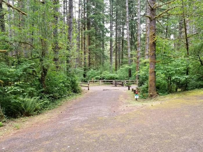 Camp Site #9 Street ViewSite #9 Street View