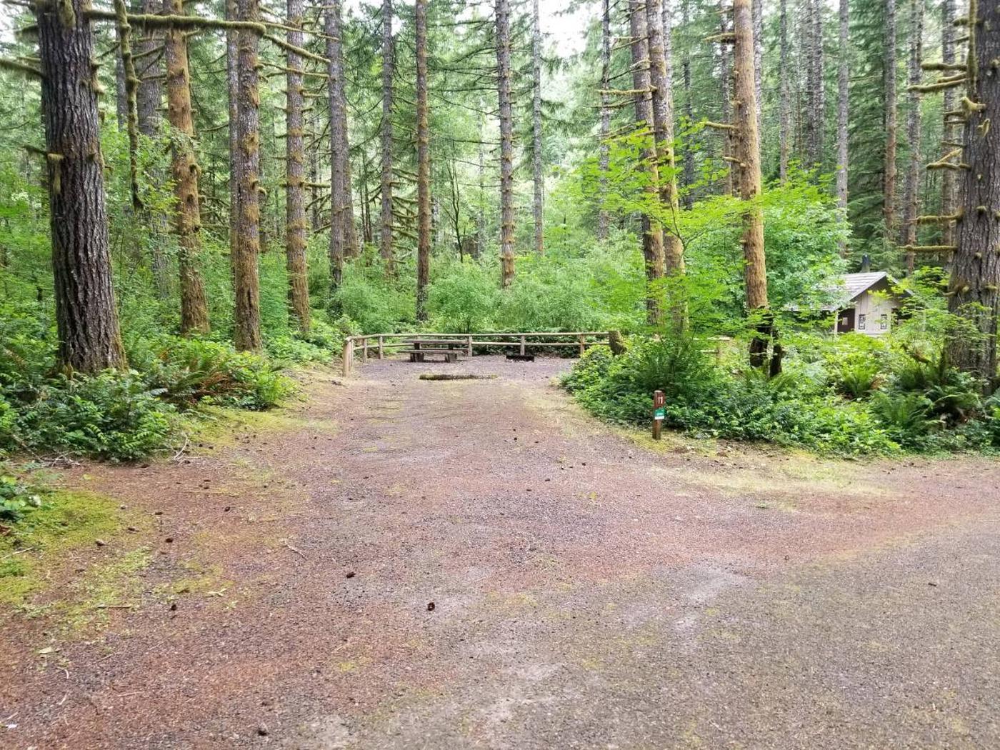Camp Site #11 Street ViewSite #11 Street View