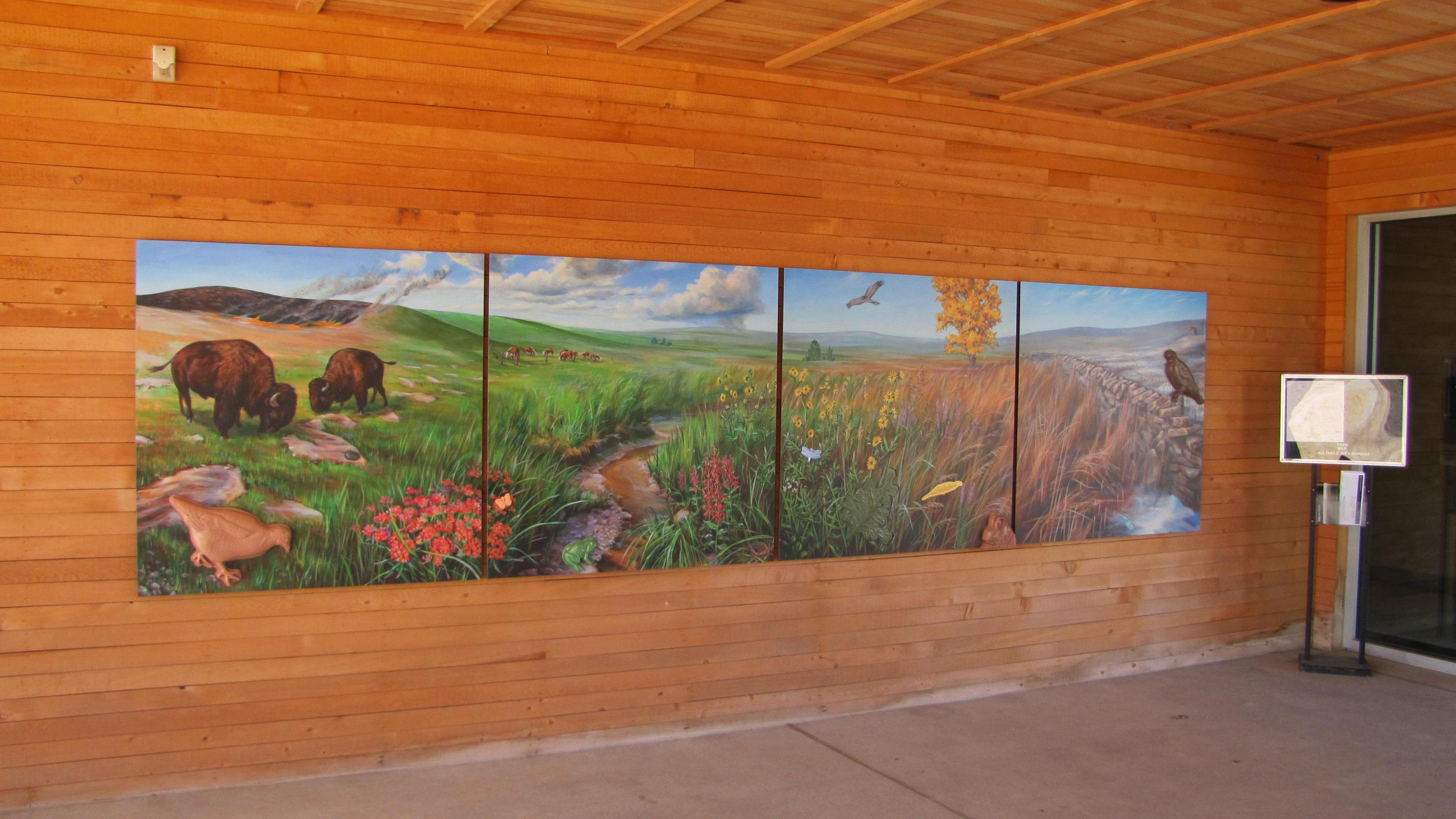Visitor Center MuralAmy Bartlett Wright's 4 piece mural raises features of the prairie ecosystem.