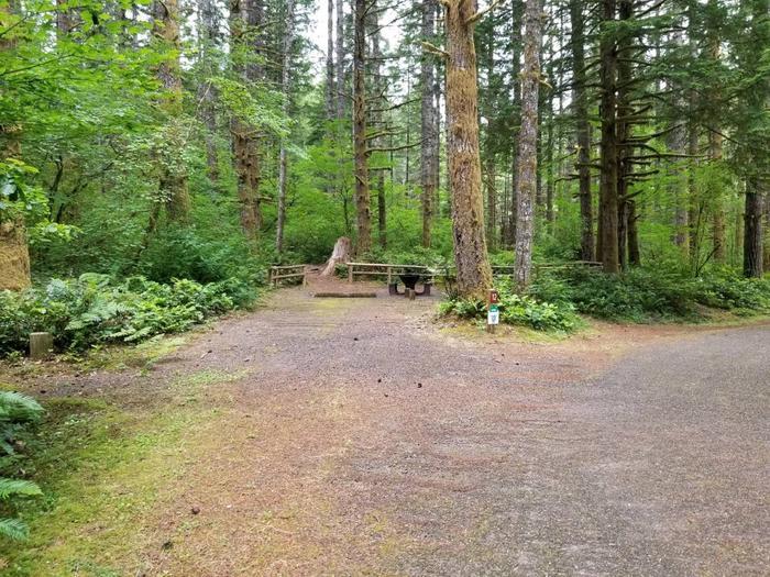 Camp Site #12 Street ViewSite #12 Street View