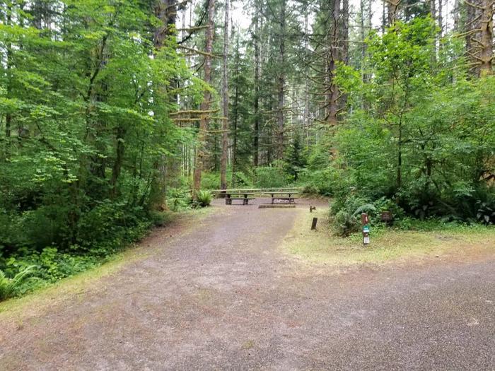 Camp Site #14 Street ViewSite #14 Street View