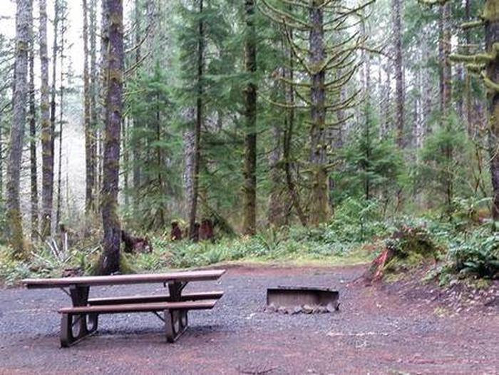 Camp Site #14 Fall PhotoSite #14 Fall Photo