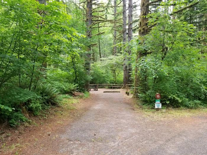 Camp Site #15 Street ViewSite #15 Street View