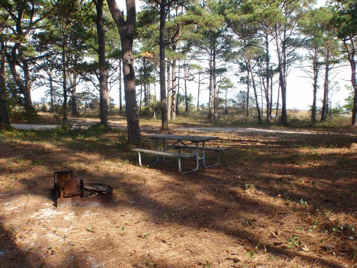 Tingles Island Campsite