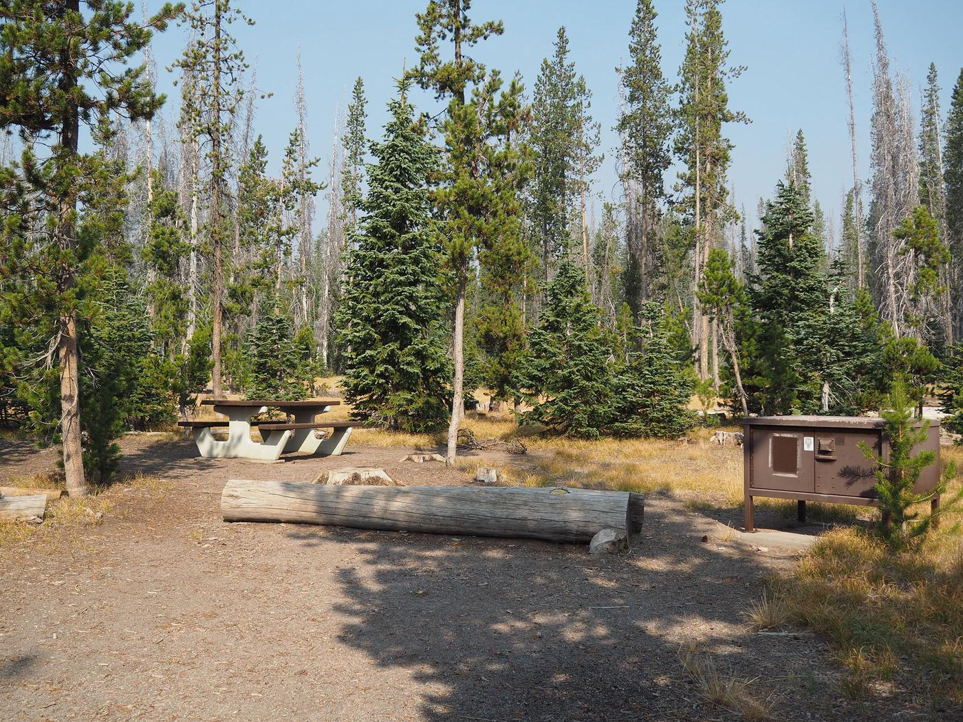 Lost Creek Campground SiteLost Creek Campsites are settled in a grassy meadow surrounded by conifers.