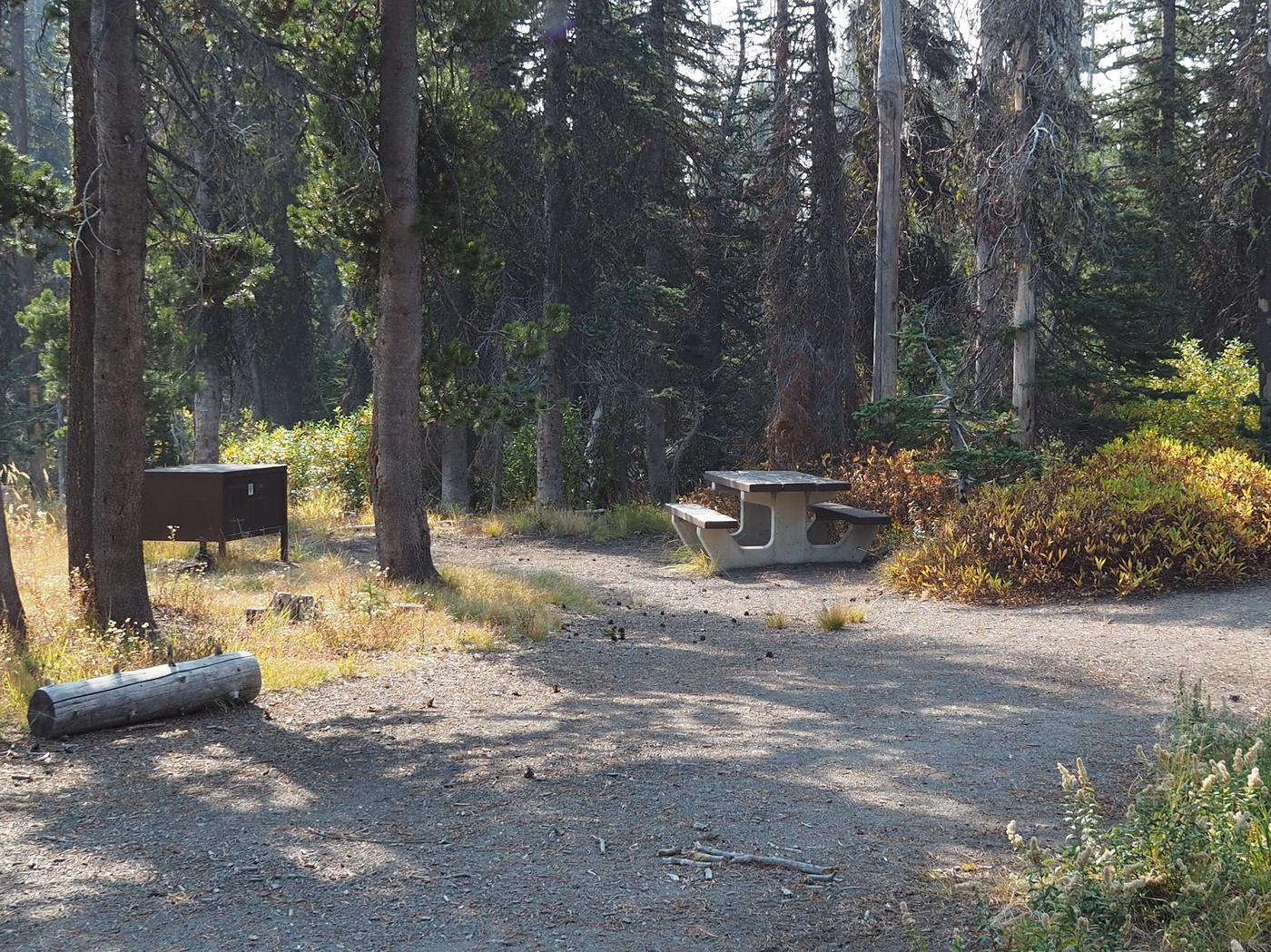 Lost Creek Campsite #4A campsite nestled next to Lost Creek and the Greyback Trail.