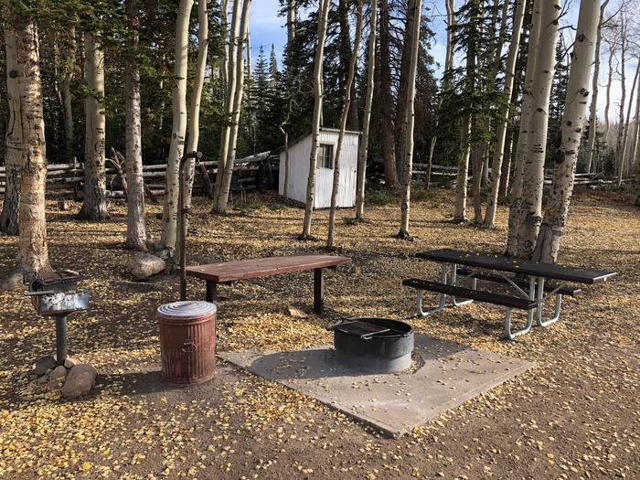 Picnic tables, fire pit and grillPicnic Area