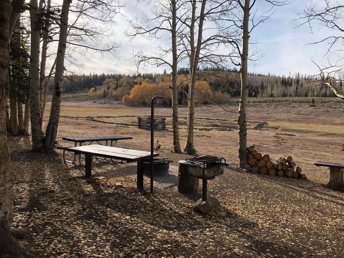 Picnic area with view of the meadow in the backgroundPicnic Area