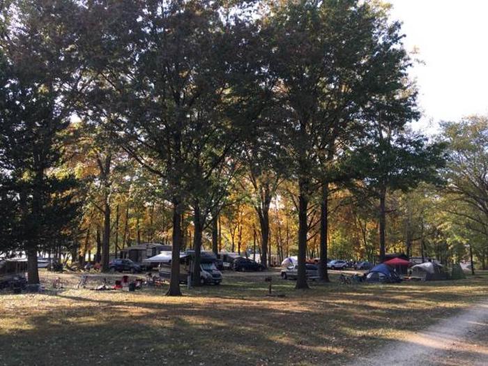 Blanding Landing Camping 2Sites #19-27