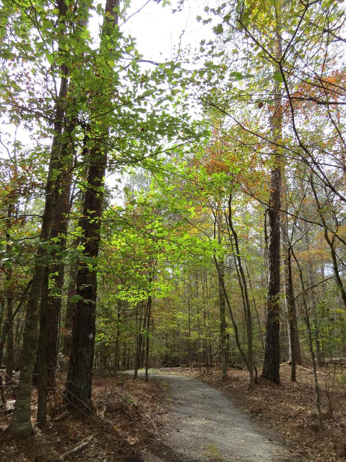Nature TrailVisitors can find solitude, seasonal beauty, and abundant wildlife along the 2.8 mile trail through the park.