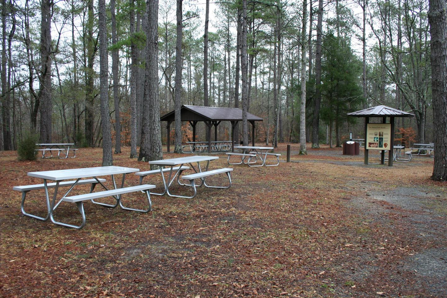 Picnic AreaPicnic tables and pavilions are available free on a first come-first served basis, or may be reserved for a fee.