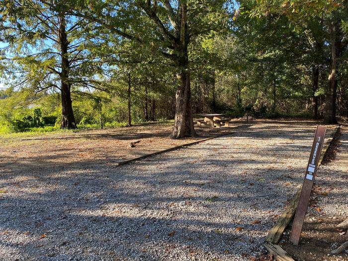 Bryant CampgroundSite One