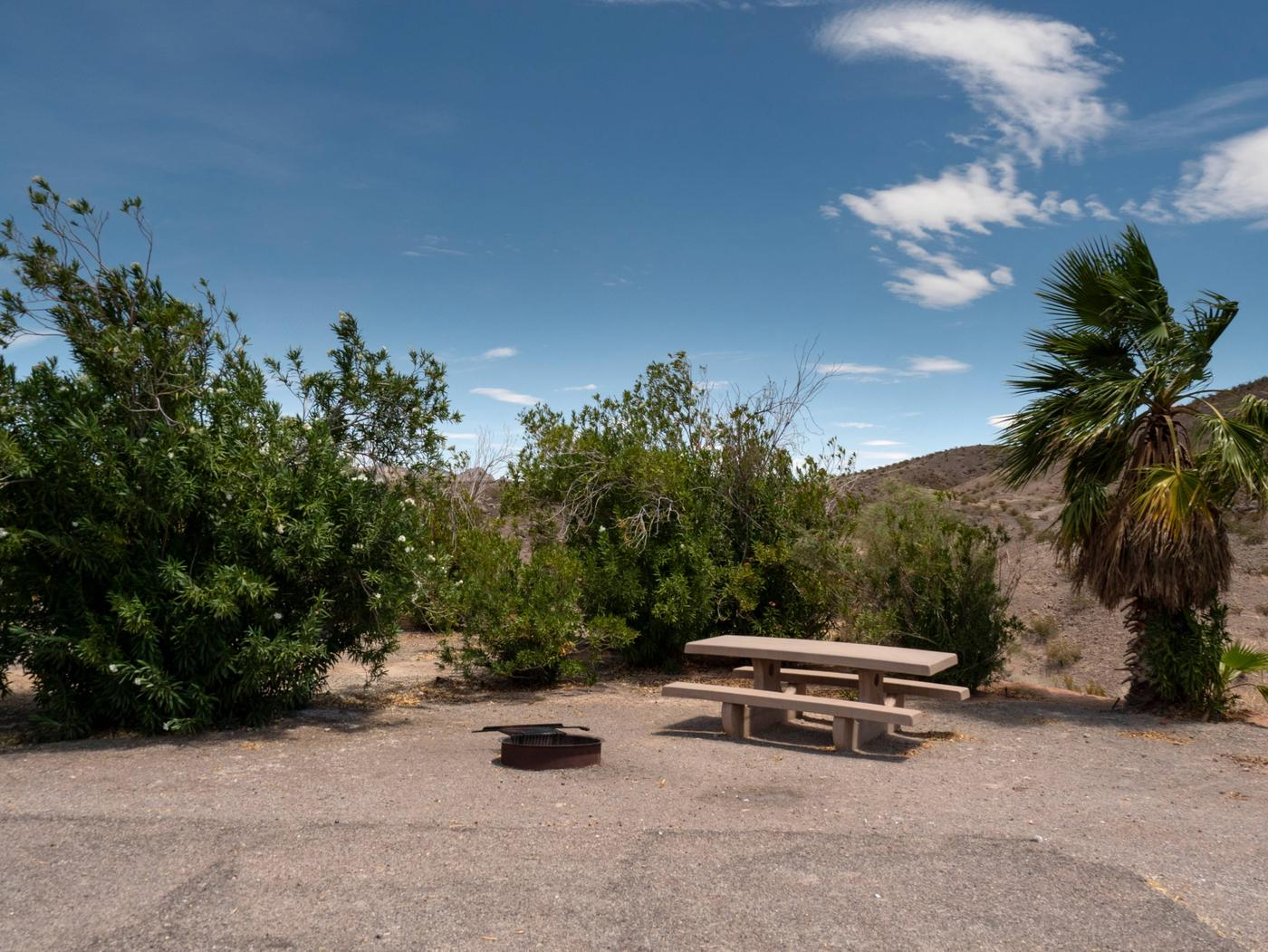 Campsite located in a desert settingCallville Bay Campground