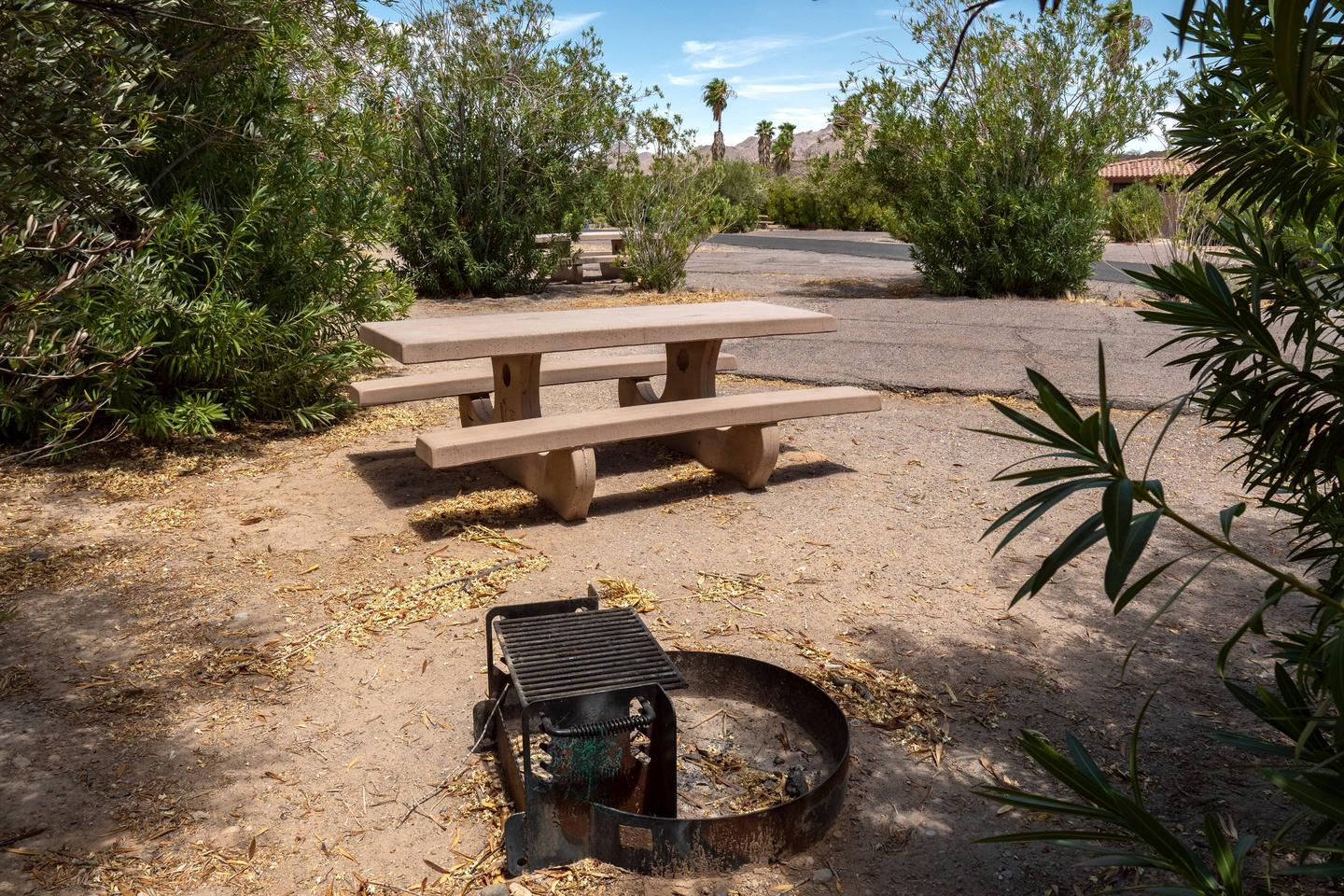 Campsite located in a desert setting2Callville Bay Campground
