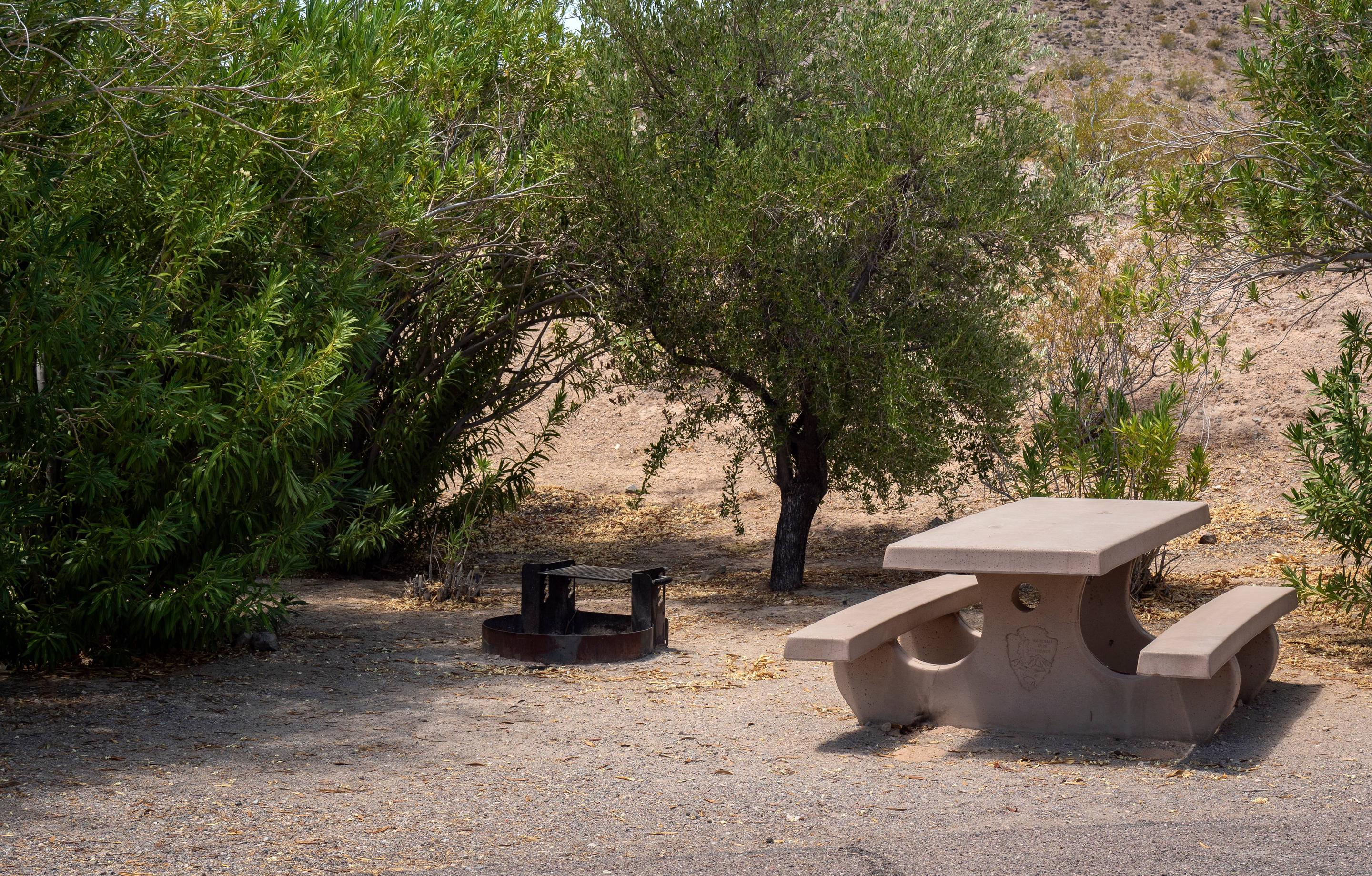 Campsite located in a desert setting1Callville Bay Campground