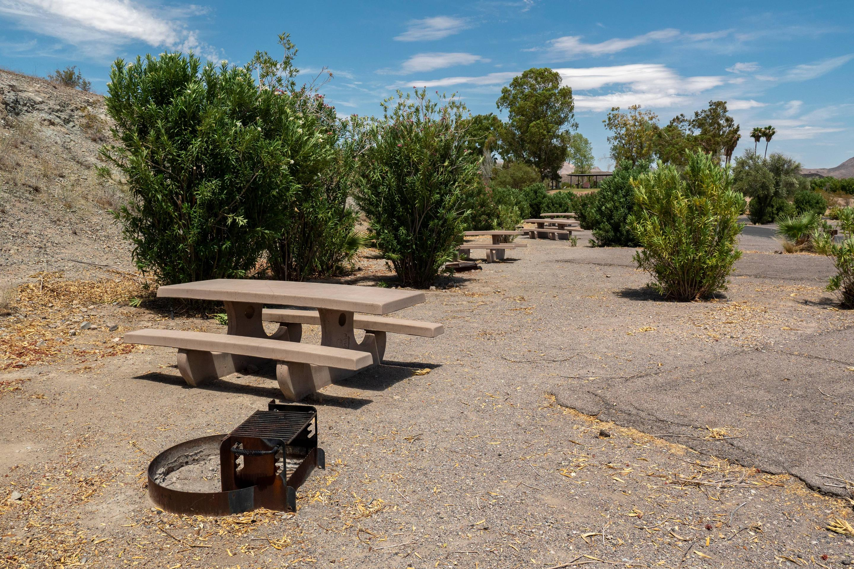 Campsite located in a desert setting4Callville Bay Campground