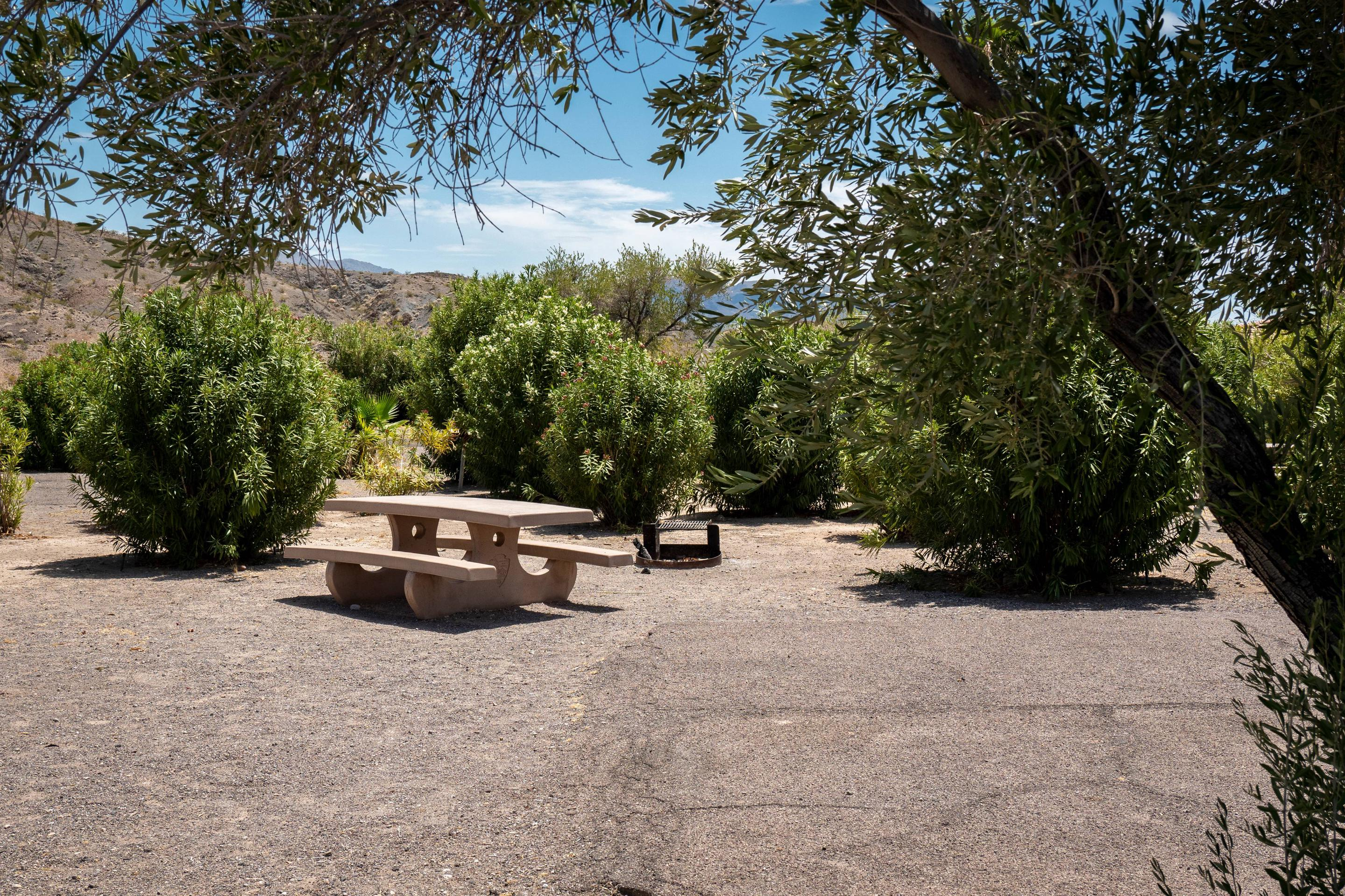 Campsite located in a desert setting6Callville Bay Campground