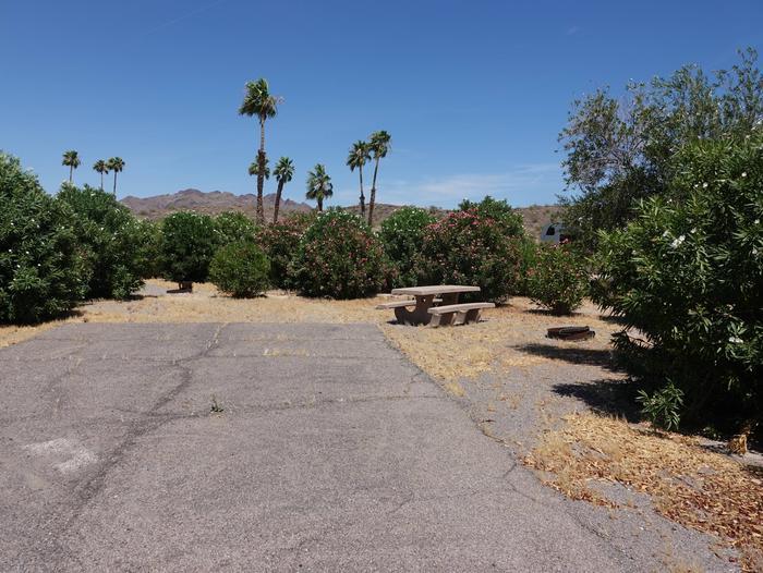 CB Campsite located in a desert setting 0601Callville Bay Campground Site 6