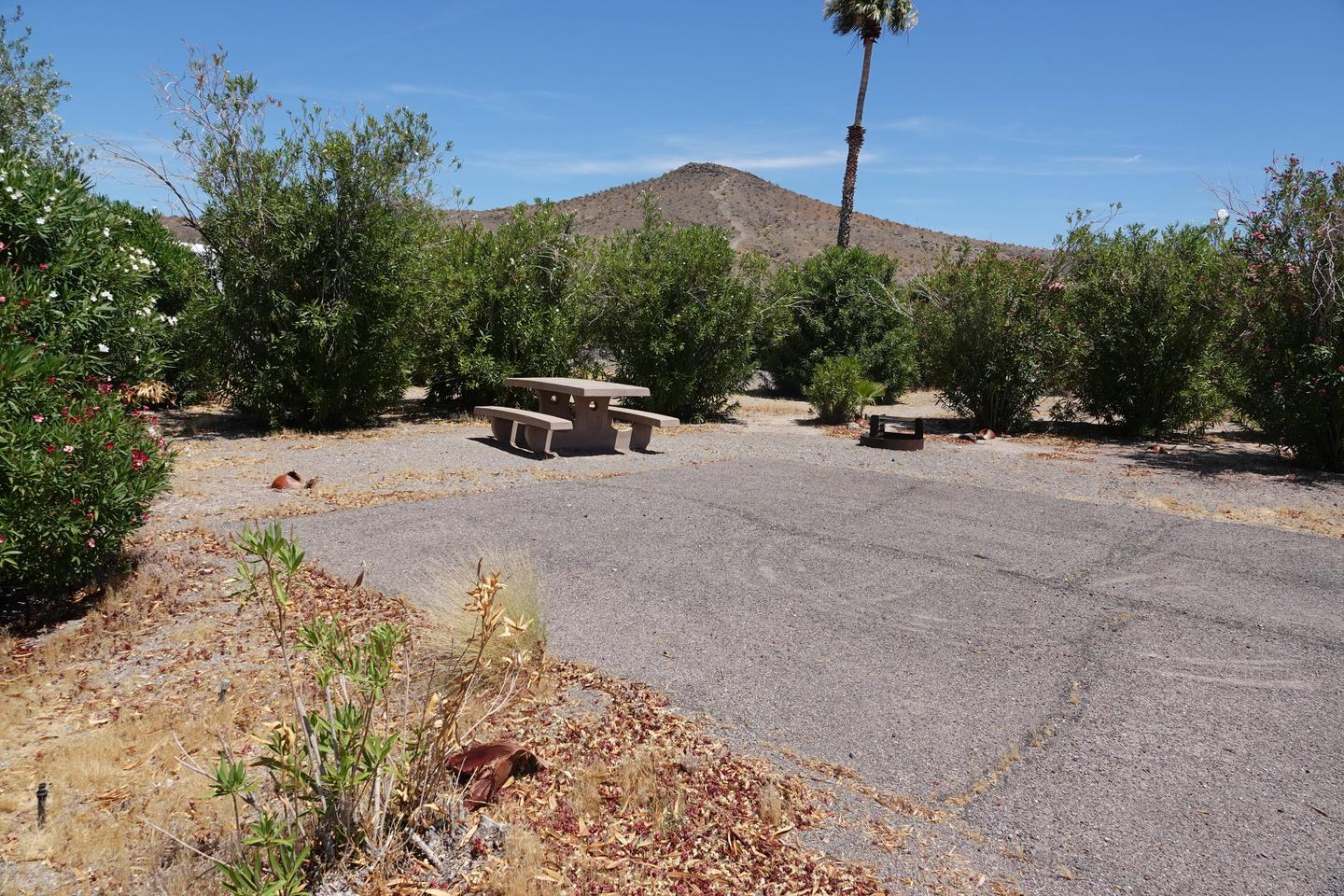 Campsite located in a desert setting1Callville Bay Campground Site 8