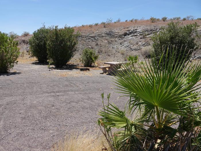 Campsite located in a desert settingCallville Bay Campground Site 9