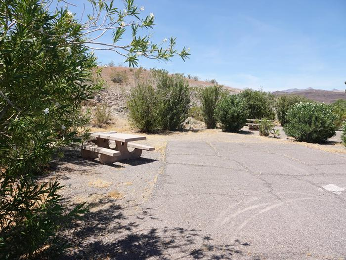 Campsite located in a desert settingCallville Bay  Campground Site 13