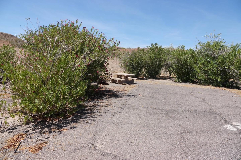 CB Campsite located in a desert setting 1602Callville Bay Campground Site 16
